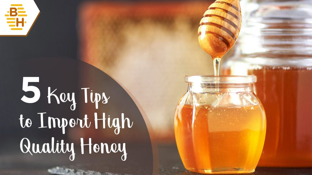 5 Key Tips to Import High Quality Honey from India