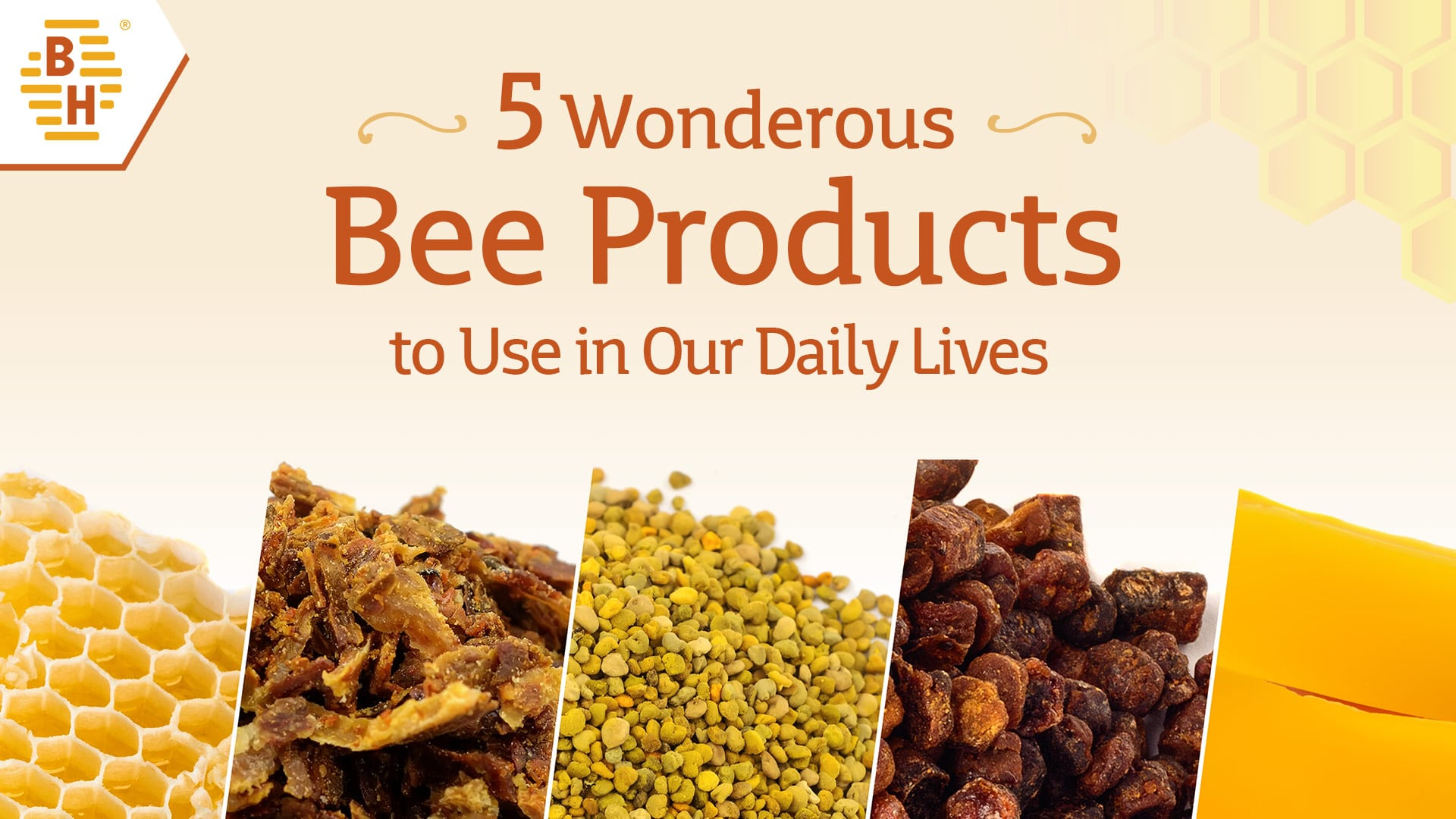 Wonderous Bee Products to Use in Our Daily Lives